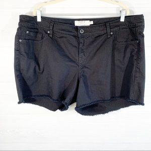 Torrid Women's 22 Black Raw Hem Shorts